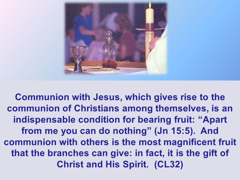 Communion with Jesus, which gives rise to the communion of Christians among themselves, is an indispensable condition for bearing fruit: Apart from me you can do nothing (Jn 15:5).