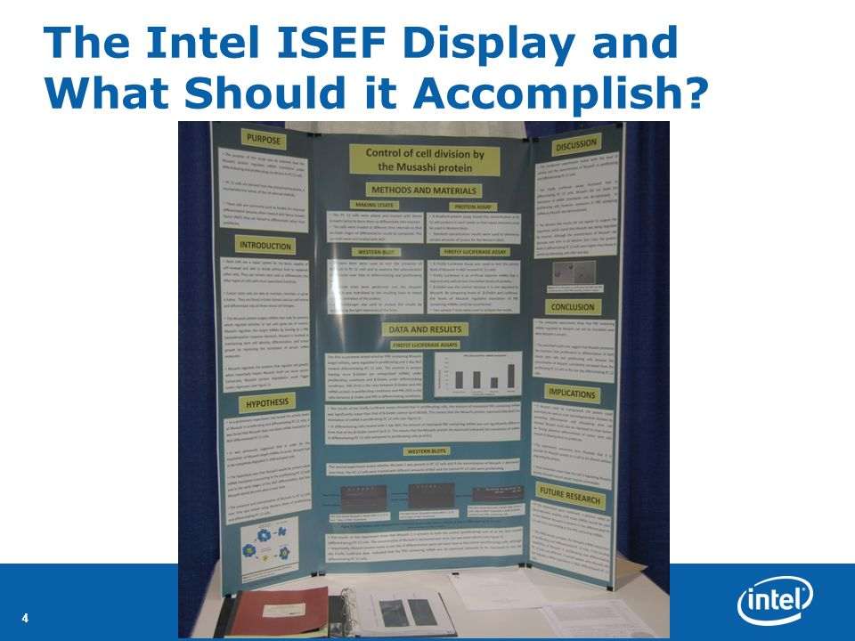 The Intel ISEF Display and What Should it Accomplish
