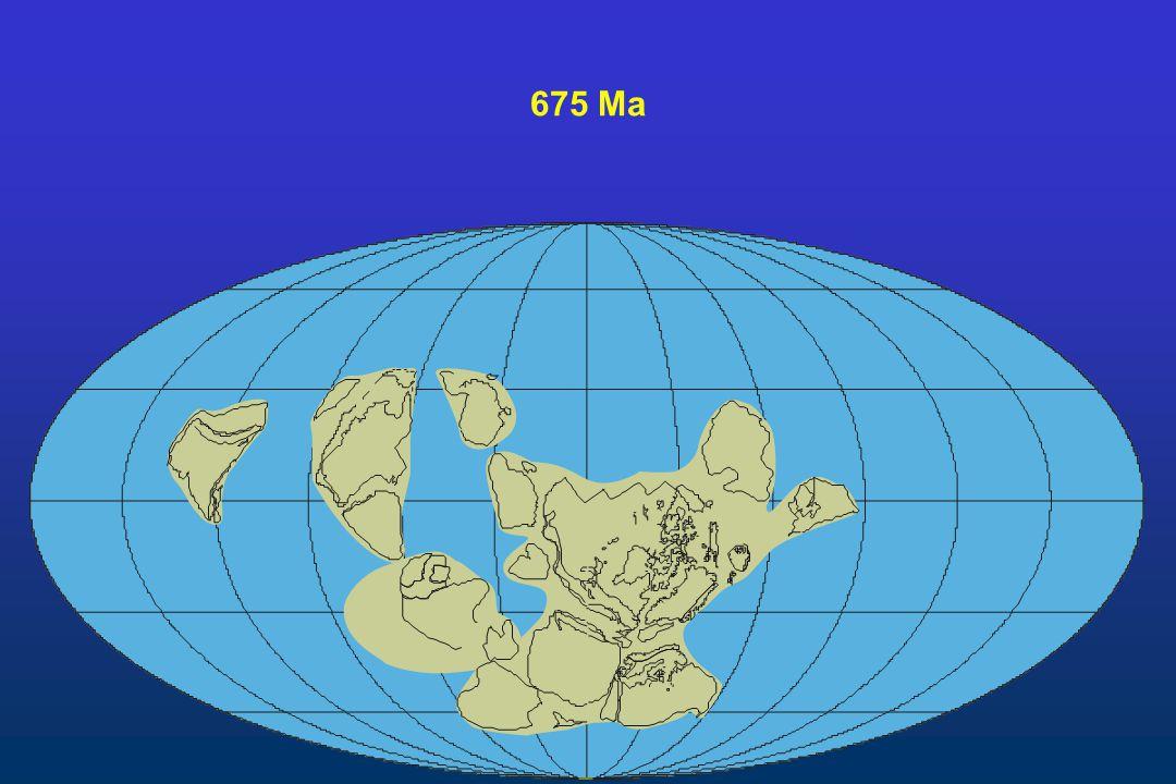 675 Ma