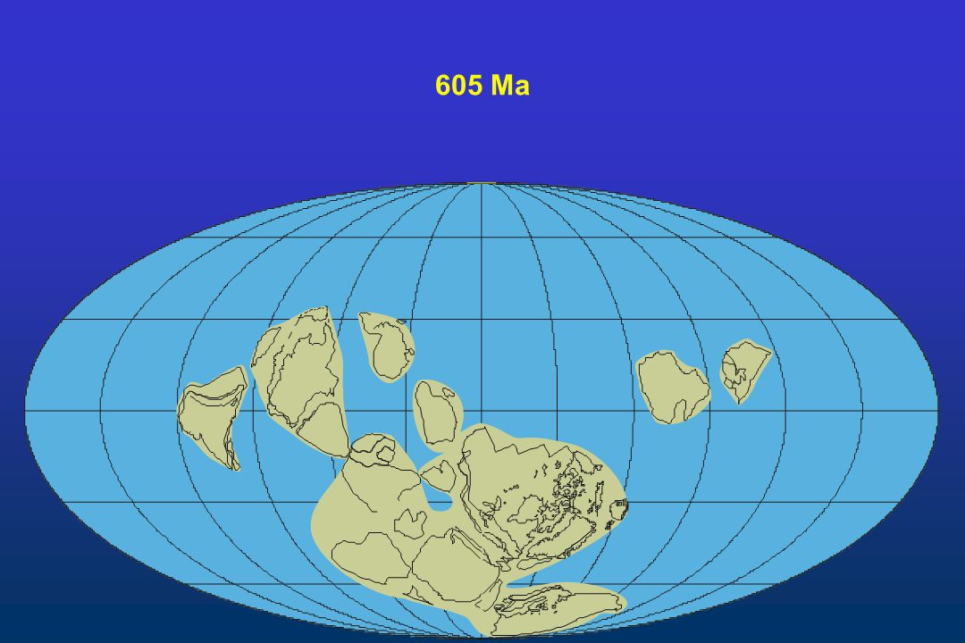 605 Ma