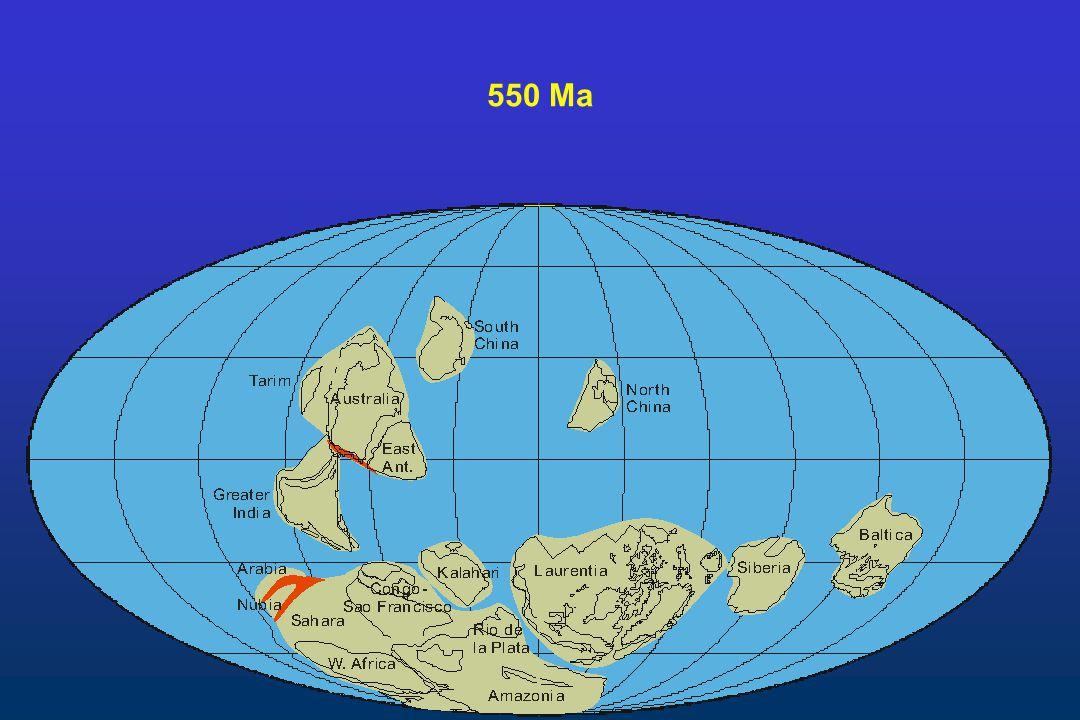 550 Ma