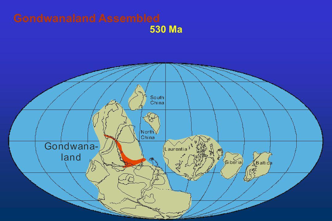 Gondwanaland Assembled