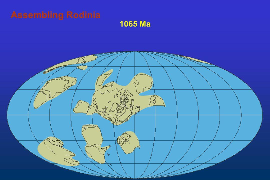 Assembling Rodinia Assembling 1065 Ma