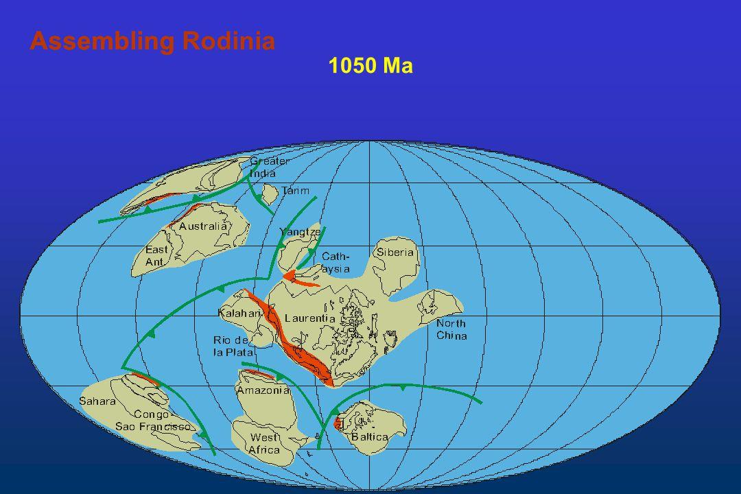 Assembling Rodinia Assembling 1050 Ma