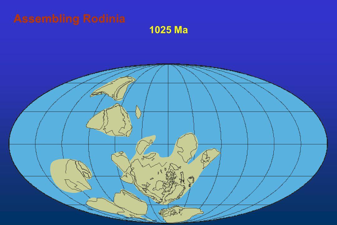 Assembling Rodinia Assembling 1025 Ma