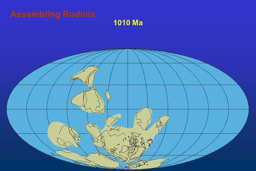 Assembling Rodinia Assembling 1010 Ma