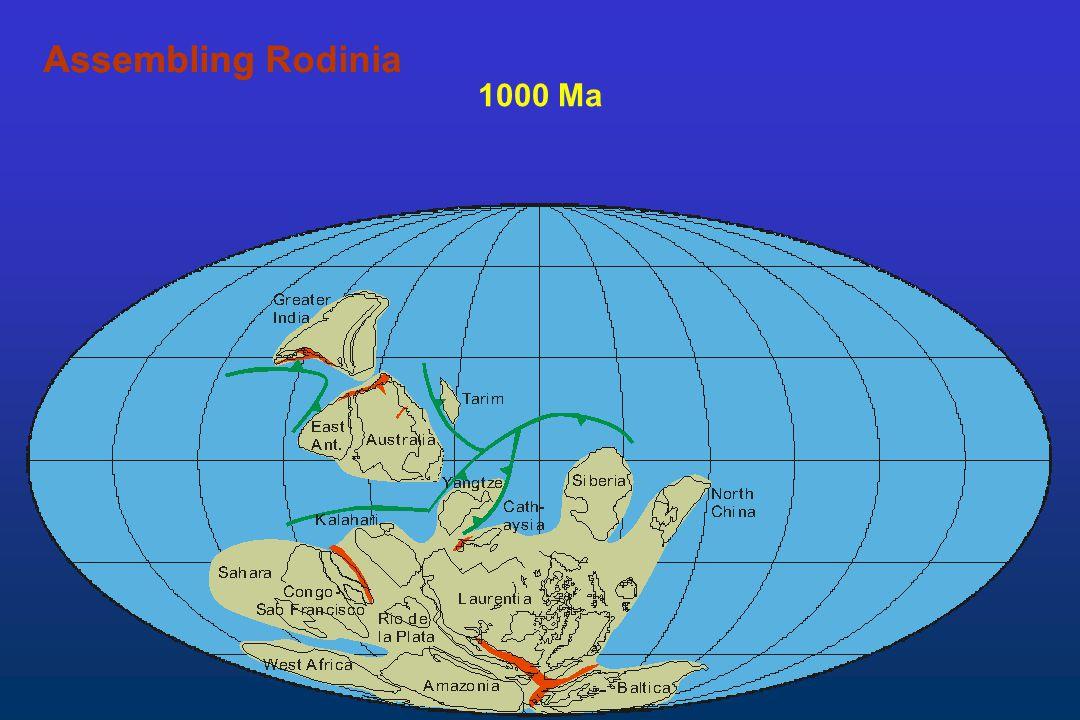 Assembling Rodinia Assembling 1000 Ma