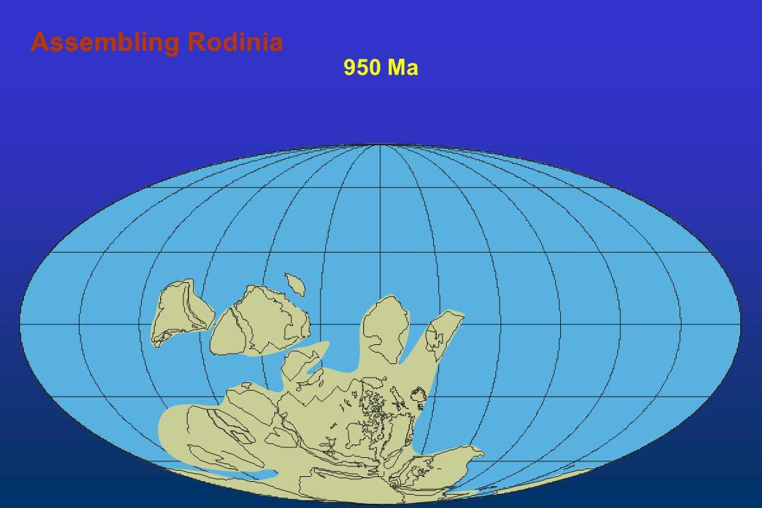 Assembling Rodinia Assembling 950 Ma