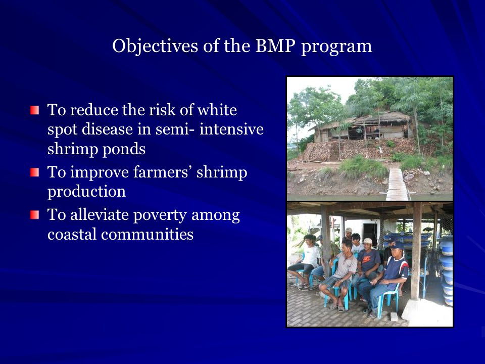 Objectives of the BMP program