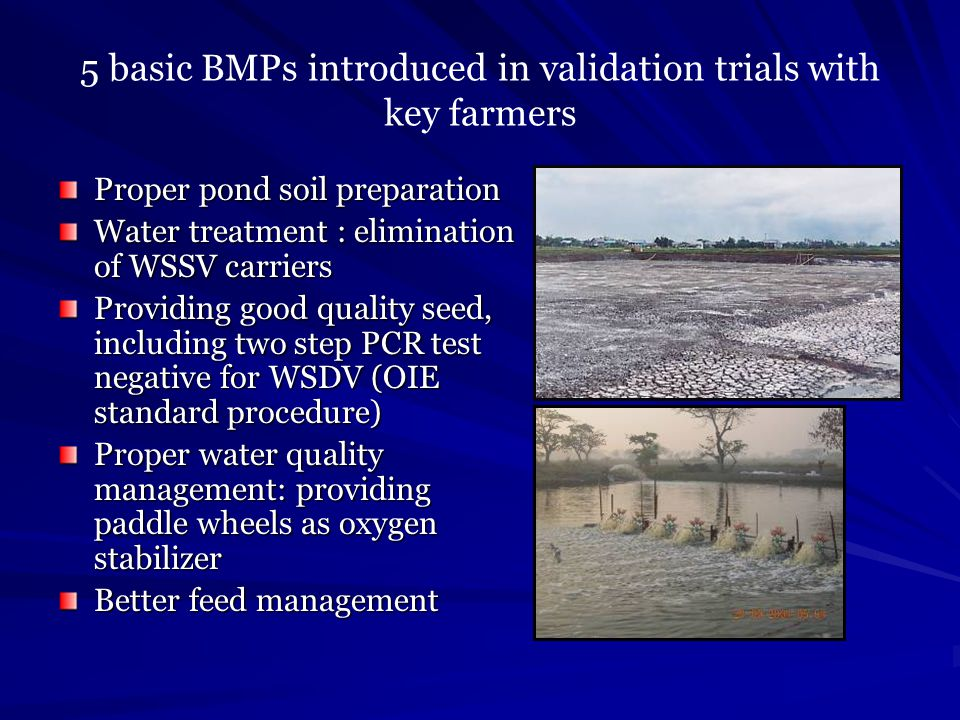 5 basic BMPs introduced in validation trials with key farmers