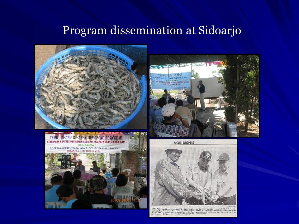Program dissemination at Sidoarjo