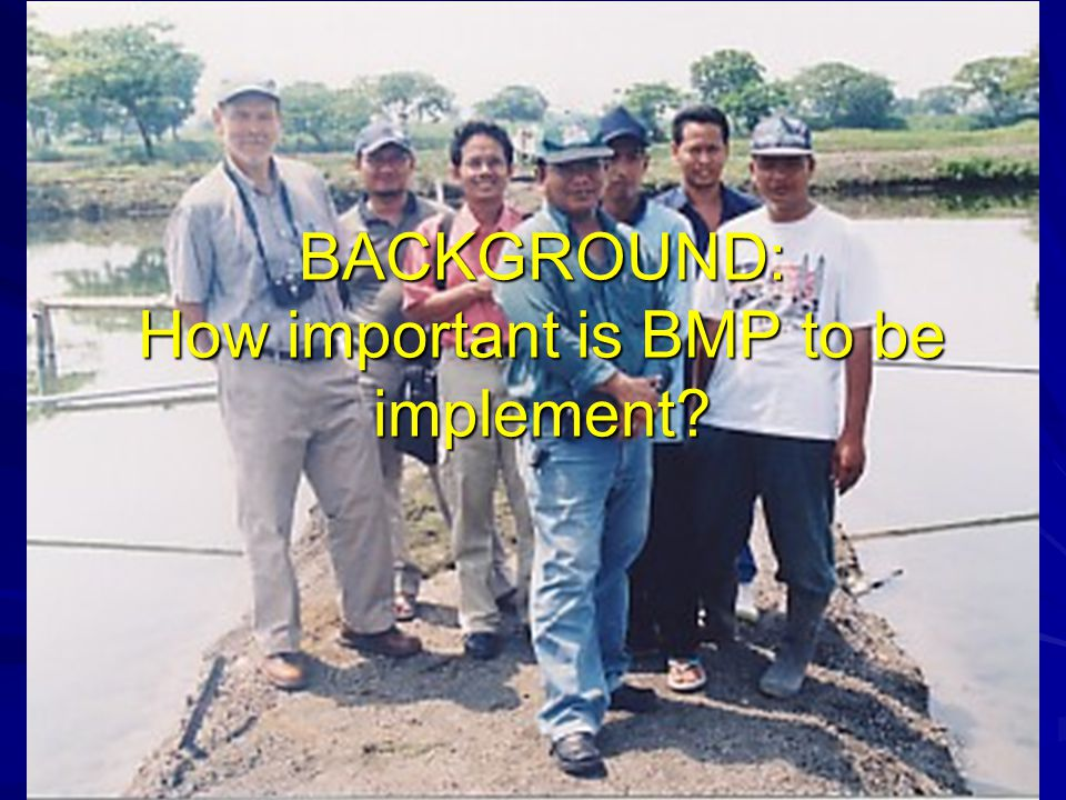 BACKGROUND: How important is BMP to be implement