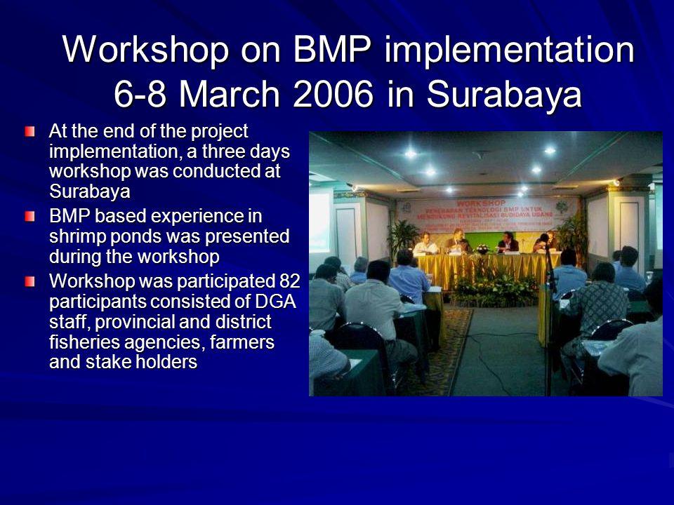 Workshop on BMP implementation 6-8 March 2006 in Surabaya