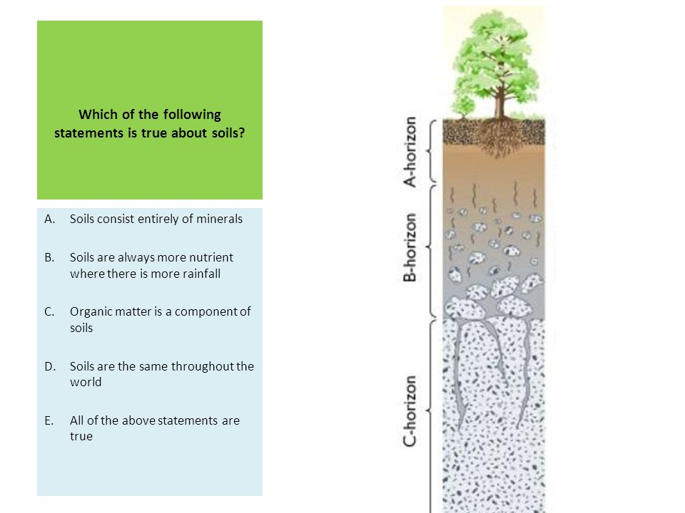 Which of the following statements is true about soils