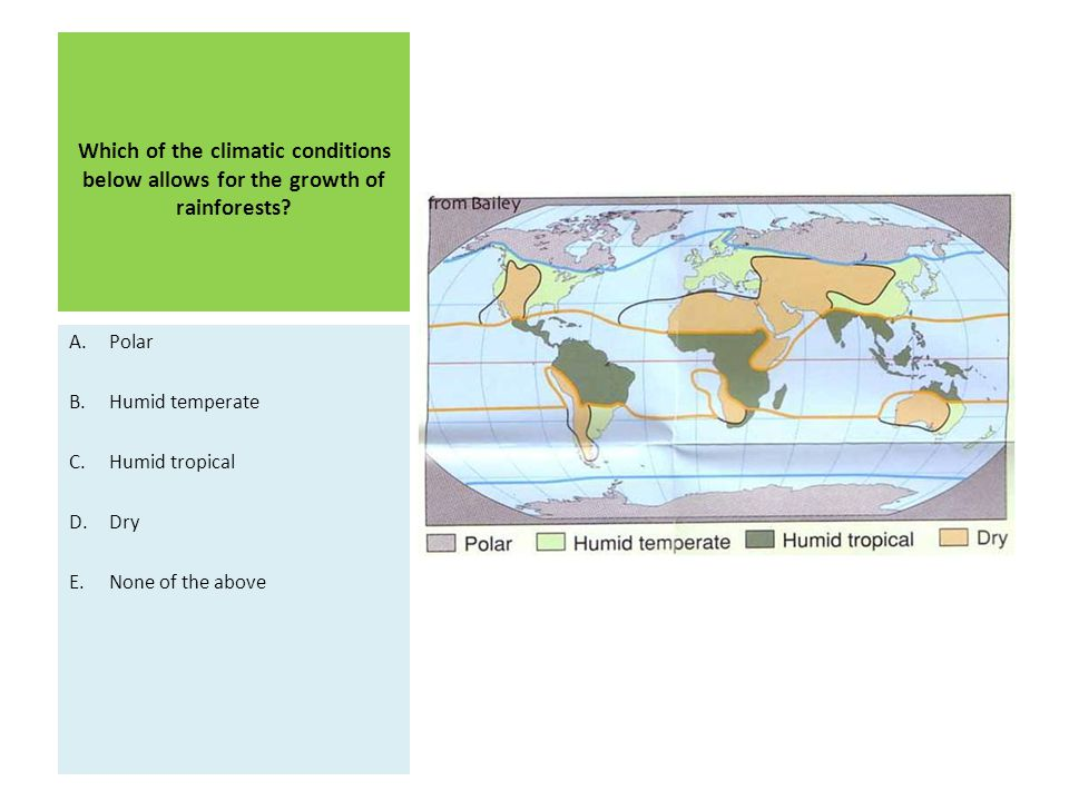 Which of the climatic conditions below allows for the growth of rainforests