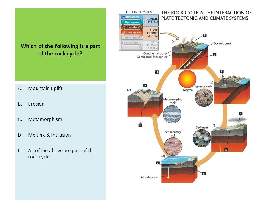 Which of the following is a part of the rock cycle