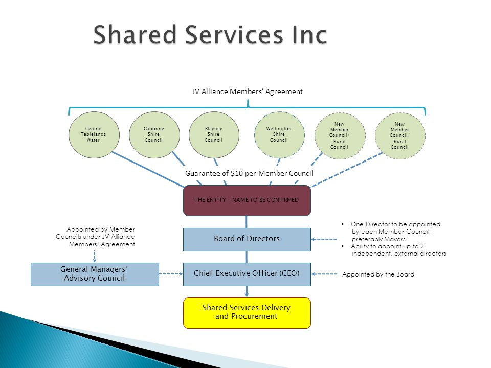 Shared Services Inc JV Alliance Members' Agreement