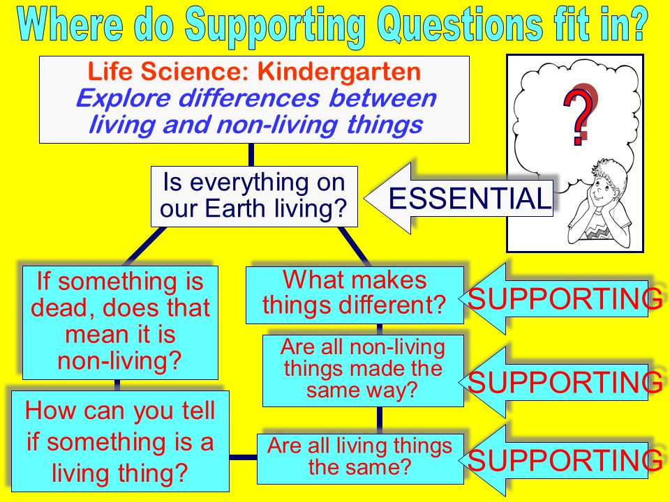 Where do Supporting Questions fit in ESSENTIAL SUPPORTING