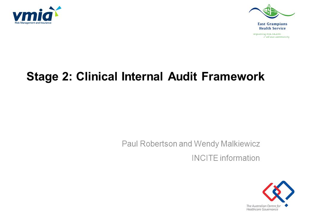 Stage 2: Clinical Internal Audit Framework