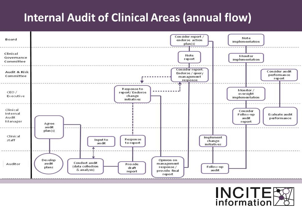 Internal Audit of Clinical Areas (annual flow)