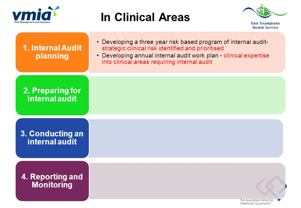 In Clinical Areas 1. Internal Audit planning