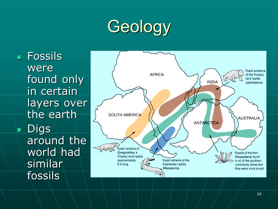 Geology Fossils were found only in certain layers over the earth