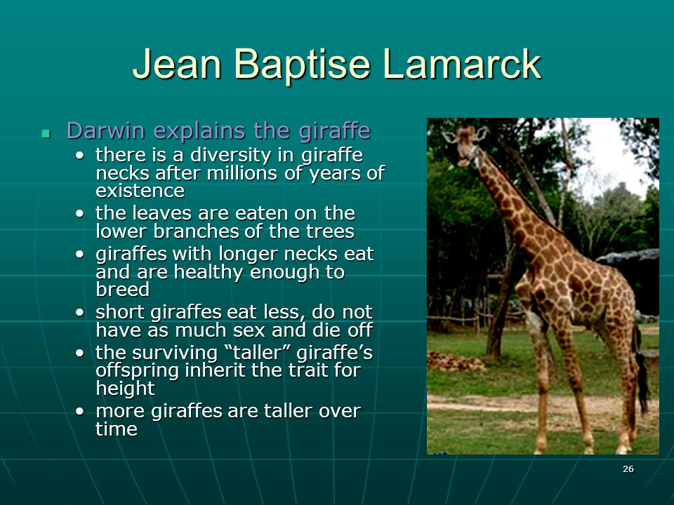 Jean Baptise Lamarck Darwin explains the giraffe