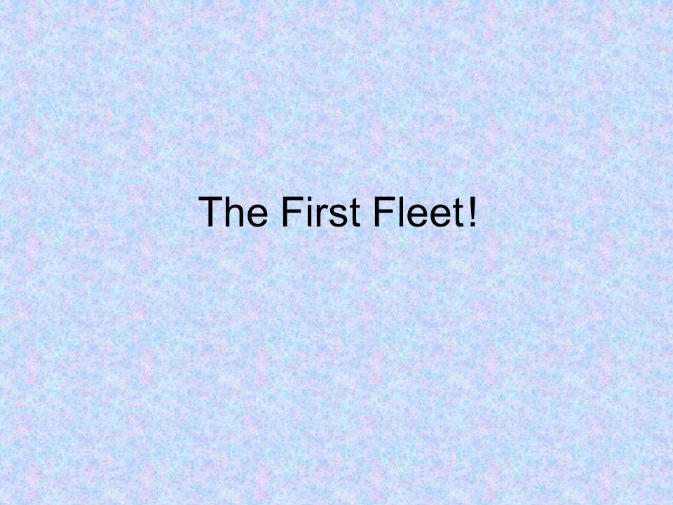 The First Fleet !