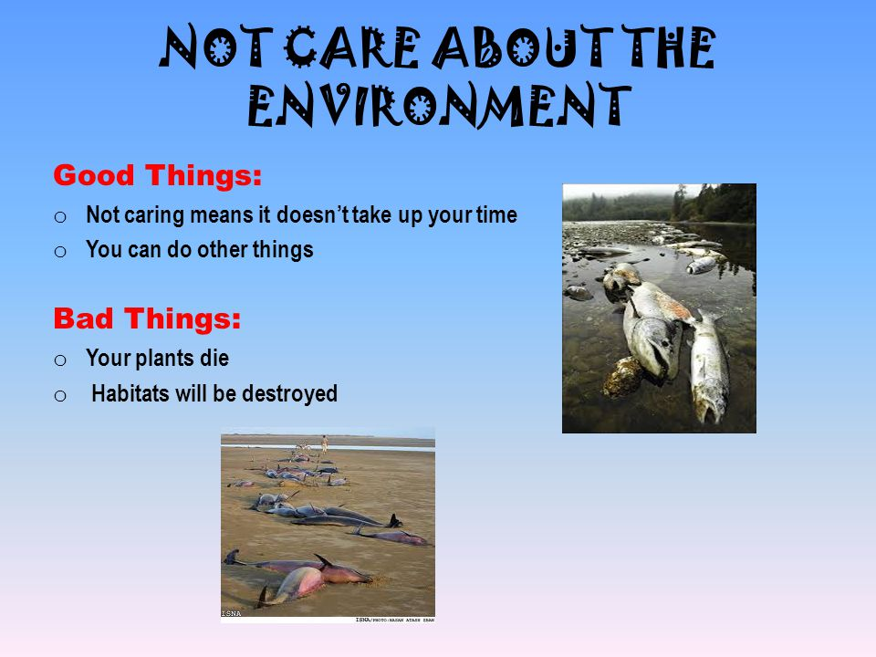 NOT CARE ABOUT THE ENVIRONMENT