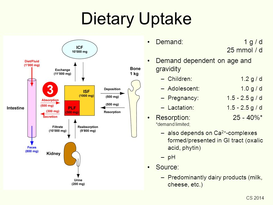 Dietary Uptake Demand: 1 g / d 25 mmol / d