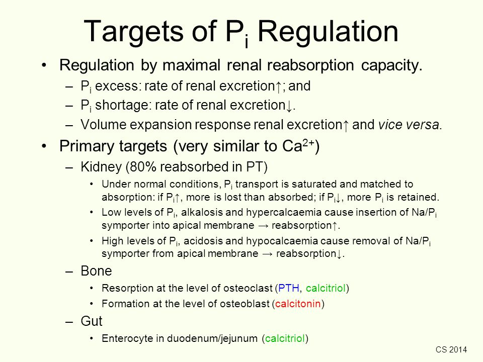 Targets of Pi Regulation