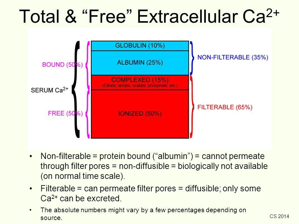 Total & Free Extracellular Ca2+