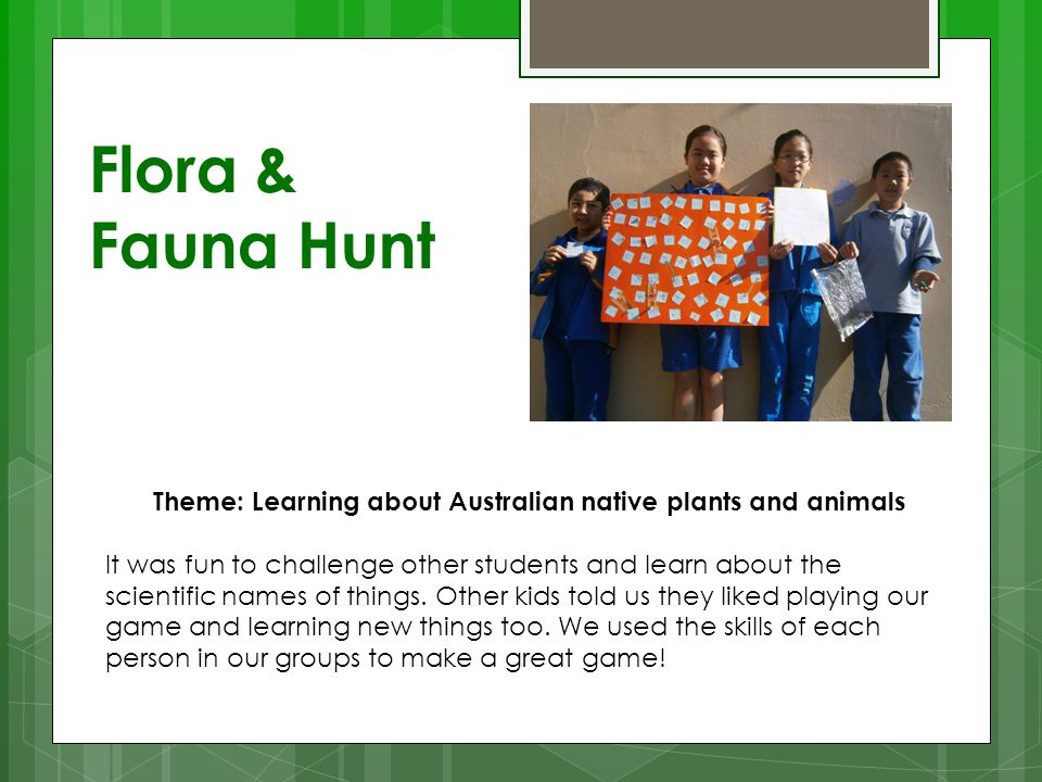 Theme: Learning about Australian native plants and animals