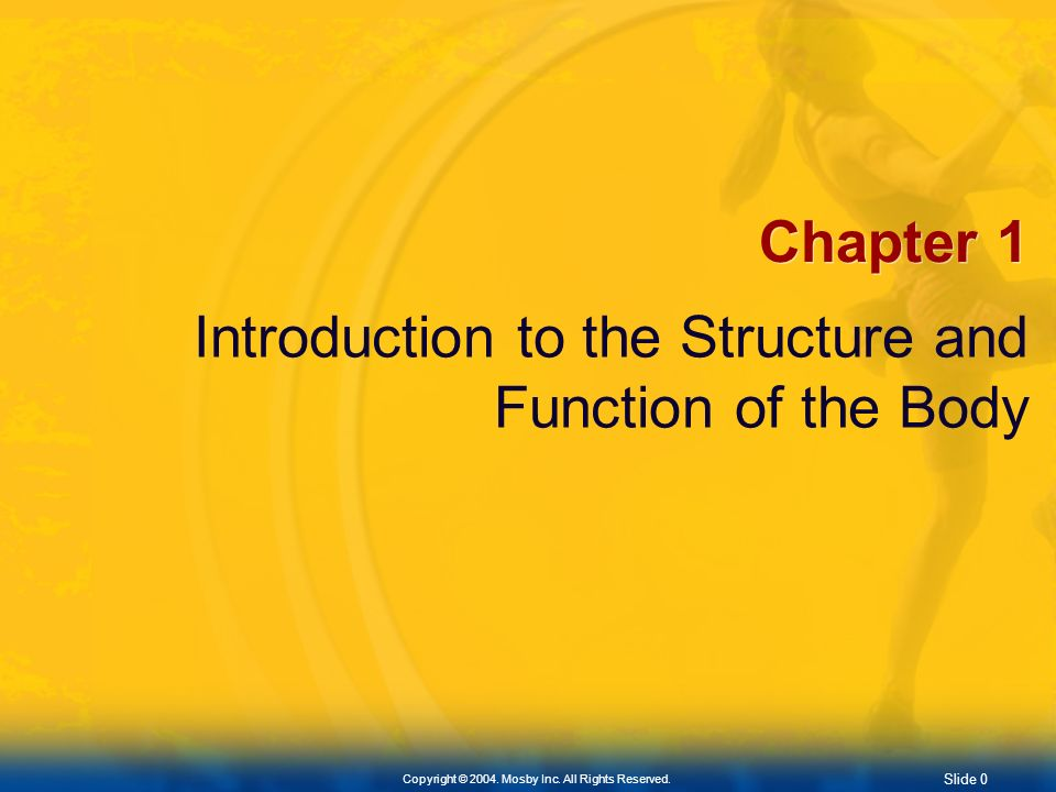 Chapter 1 Introduction to the Structure and Function of the Body