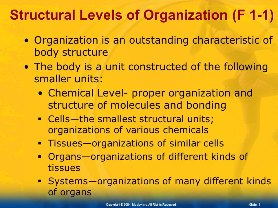 Structural Levels of Organization (F 1-1)