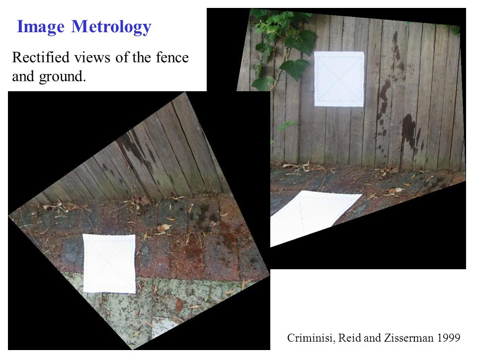 Image Metrology Rectified views of the fence and ground.