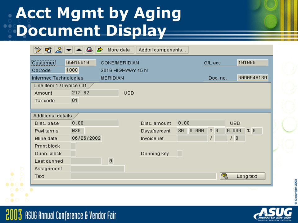 Acct Mgmt by Aging Document Display