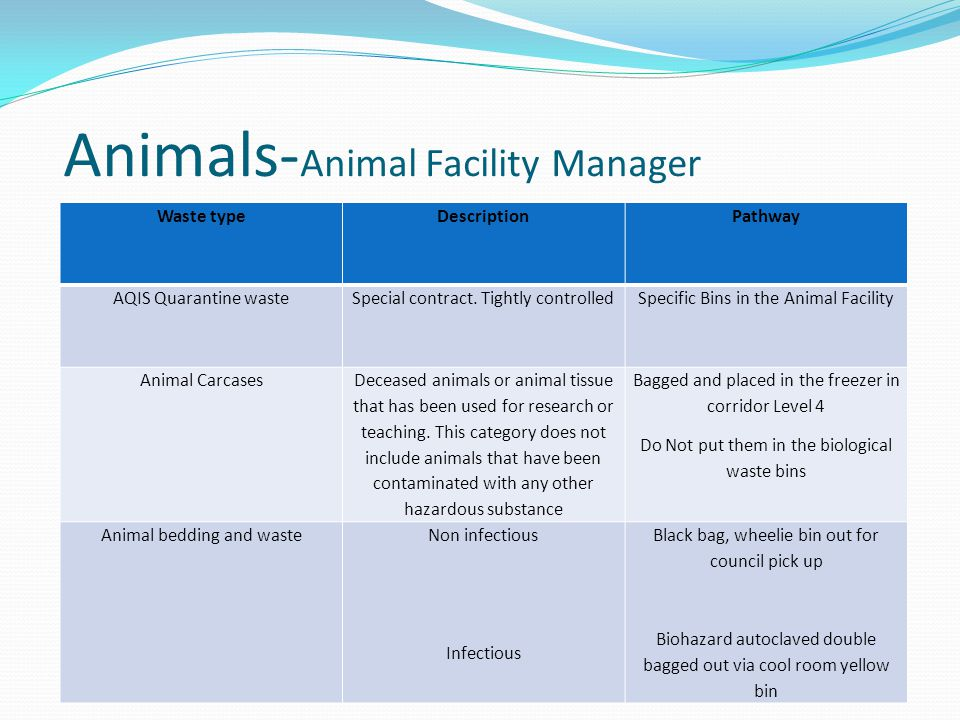 Animals-Animal Facility Manager