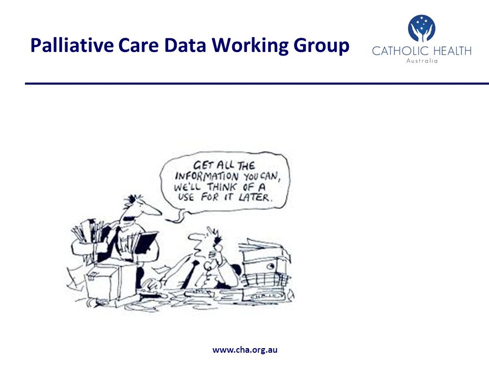 Palliative Care Data Working Group