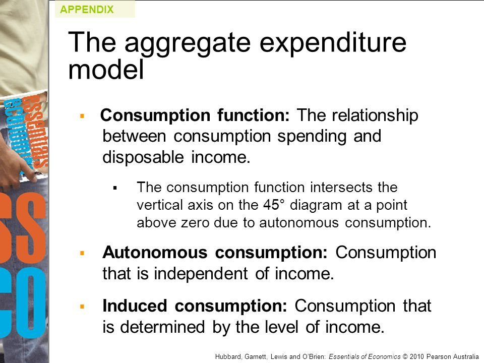 The aggregate expenditure model