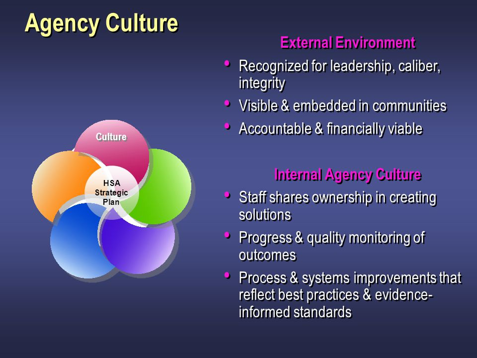Internal Agency Culture