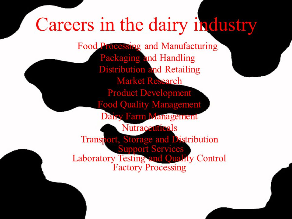 Careers in the dairy industry