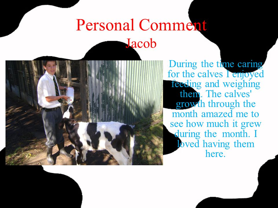 Personal Comment Jacob