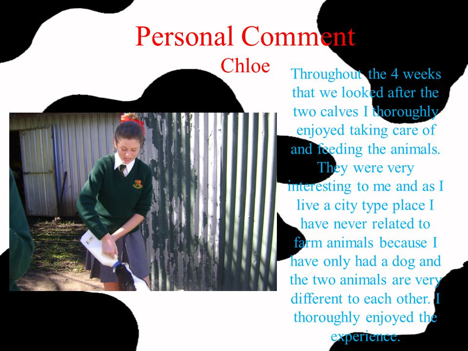 Personal Comment Chloe