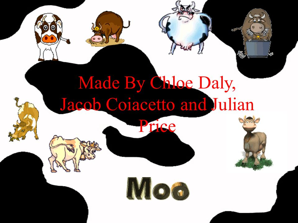 Made By Chloe Daly, Jacob Coiacetto and Julian Price