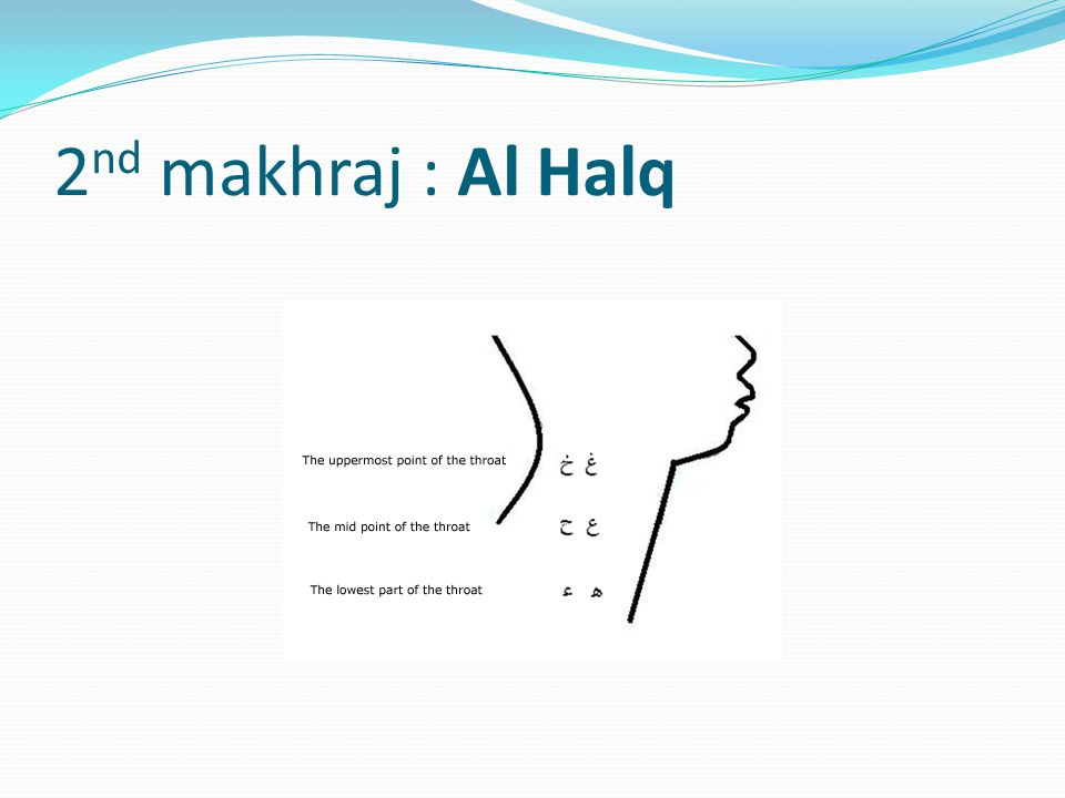 2nd makhraj : Al Halq