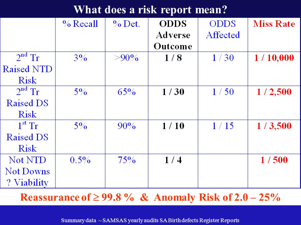 What does a risk report mean