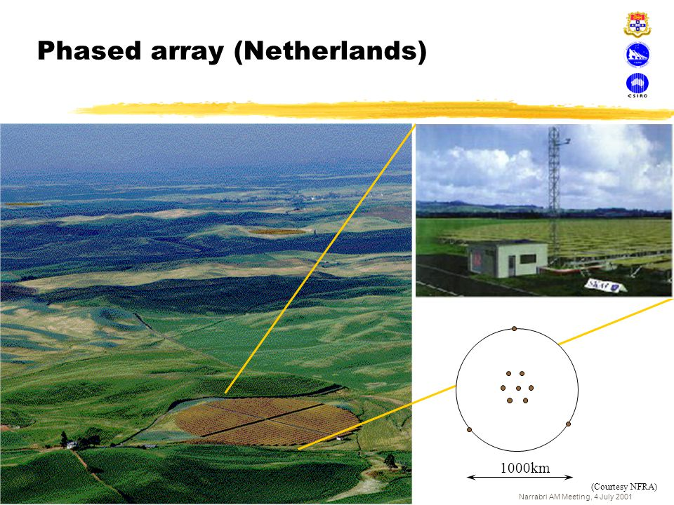 Phased array (Netherlands)