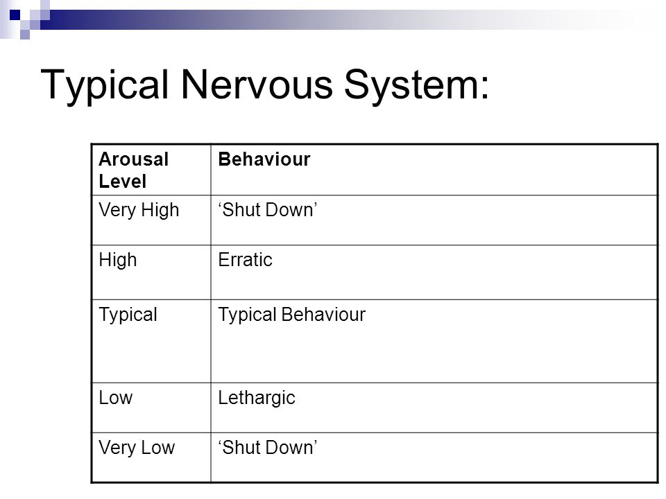 Typical Nervous System: