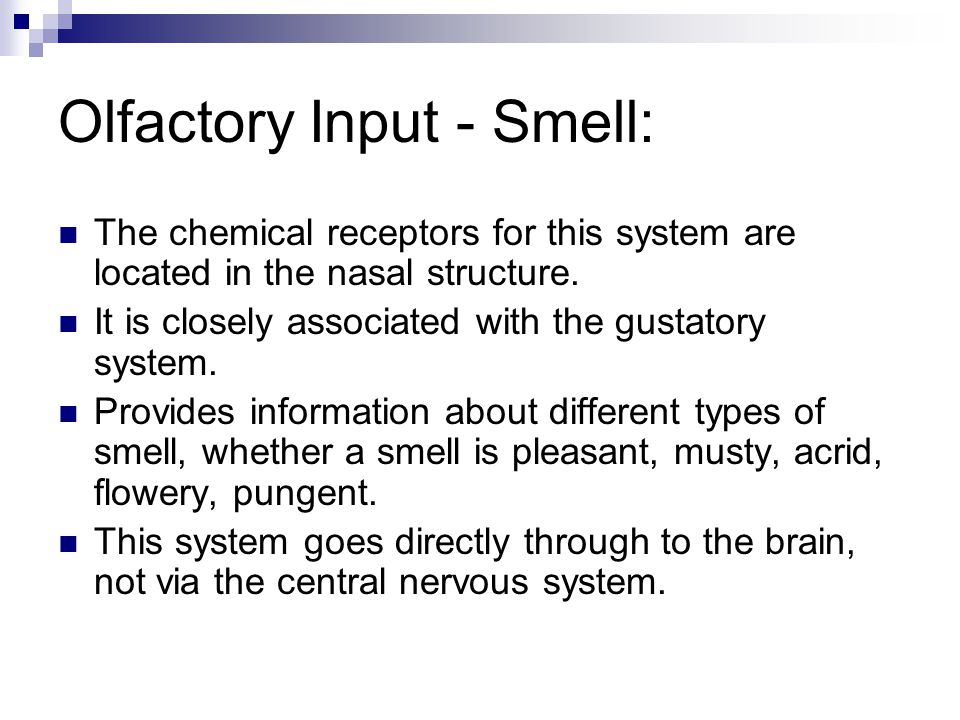 Olfactory Input - Smell: